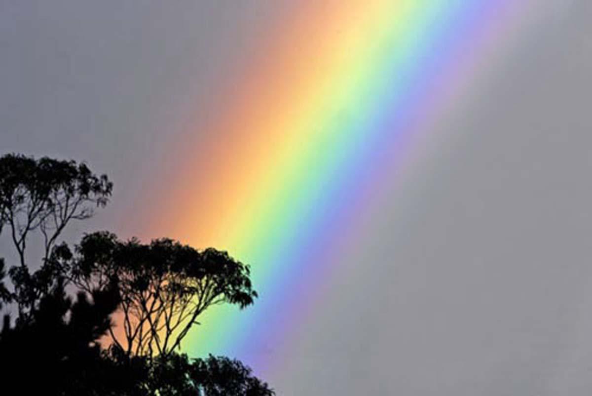Park Rainbow